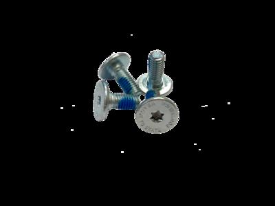Bevestigingboutjes Torx Plat M6 15mm 4 stuks