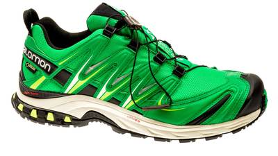XA Pro 3D GTX fern-green/light-grey/black