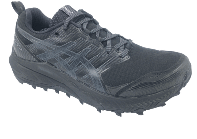 Asics Gel-Trabuco 9 GTX black/carrier grey [women]